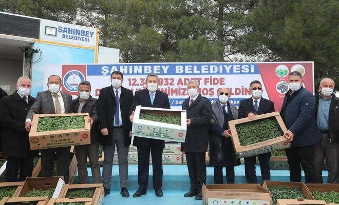 Gaziantep'te çiftçilere ücretsiz fide dağıtıldı