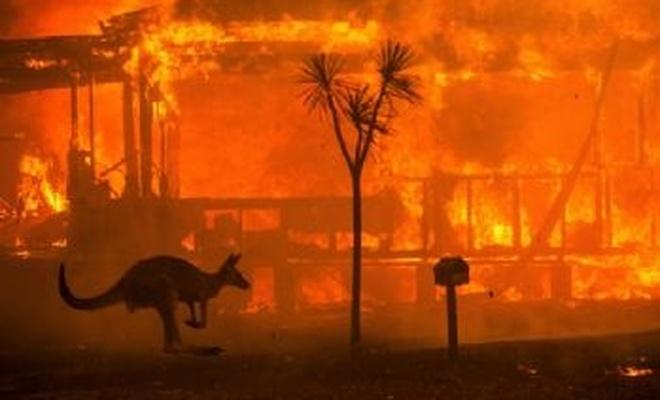 Avustralya'da yangınların sürdüğü eyalette şiddetli yağış bekleniyor