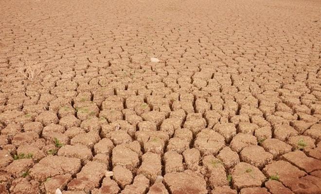 Çin'de kuraklık alarmı