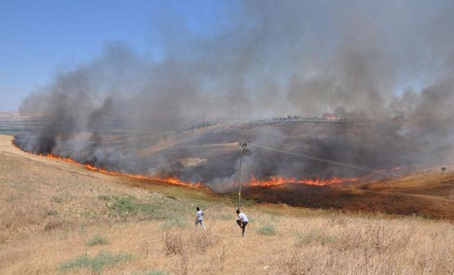 """SAĞ-ÇEV Başkanı Güneş: """"Anız yakanların tarlalarına ekim yapmalarına izin verilmesin"""""""