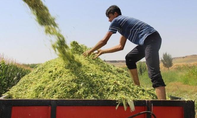 Çiftçi başvuruları 31 Aralık`ta sona erecek