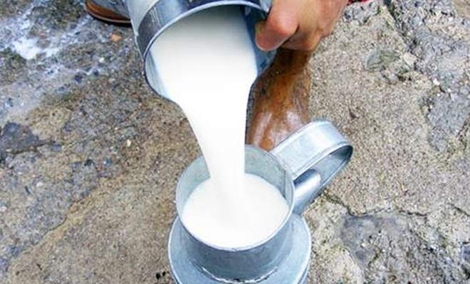 Sokaklarda çiğ süt satışı yasaklandı