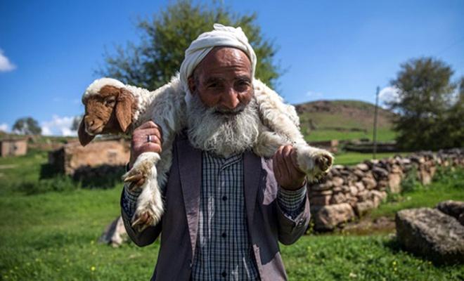 Maaş 5 bin lira… Ama çoban yok!