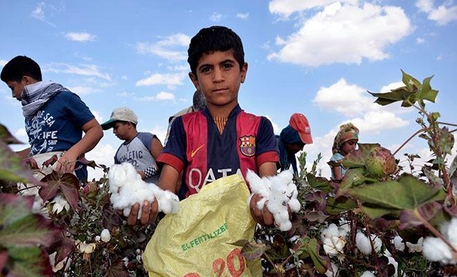 En fazla çocuk işçi o sektörde