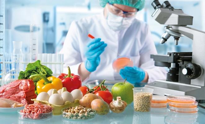 """Gıdamız kime emanet? """"Tarım Bakanlığı Bill Gates Vakfı ile protokol imzaladı"""""""
