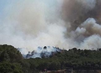 Gelibolu'daki orman yangını kontrol altına alındı