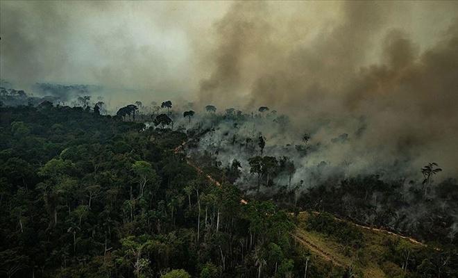 Dünyanın akciğerleri Amazonlar yanıyor!