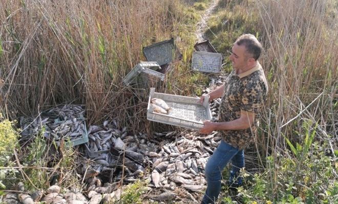 Kaçak avlanan 1 ton balığı piknik alanına bıraktılar