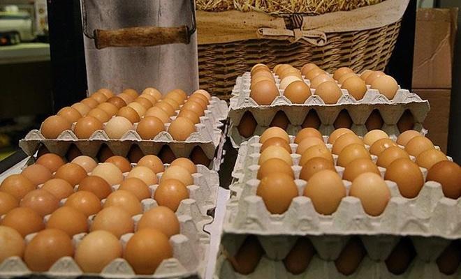 TZOB Başkanı:  Yumurtada ihracat sıkıntısı çözülmeli