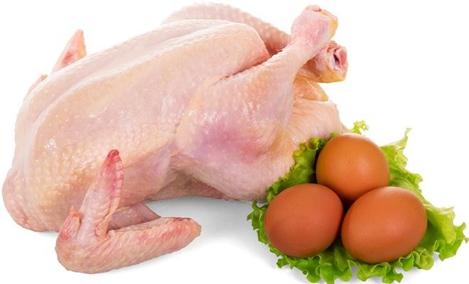 Tavuk eti üretimi düştü, yumurta üretimi arttı