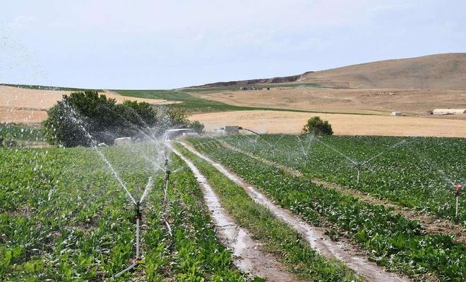 """Bakan Pakdemirli: """"Programlı sulamanın yapıldığı alanlarda yüzde 26 verim artışı sağlandı"""""""