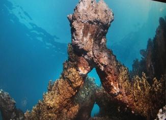 Van Gölü'nün su altı sırları film oldu