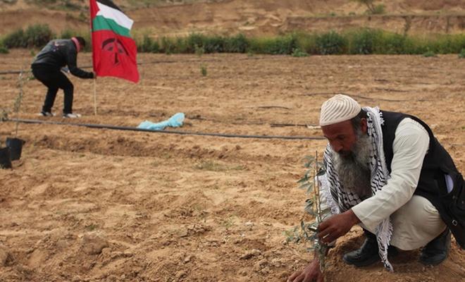 Çete yine Filistin`e dadandı