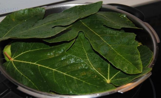 Zeytin yağlı sarma yaparken onu kullanın, Diyabet, kalp ve kolon kanseri için birebir
