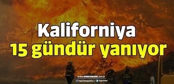 Kaliforniya 15 gündür yanıyor