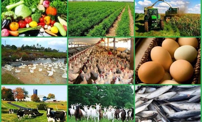 'Tarım ve gıdada sürdürülebilirlik' ana hedef olacak