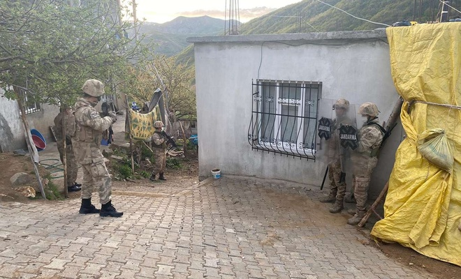 Bitlis merkezli PKK operasyonu: 9 gözaltı