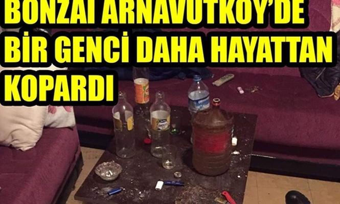 Arnavutköy`de bonzaiye bir kurban daha