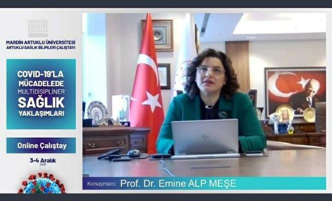 Mardin'de Covid-19 çalıştayı düzenlendi