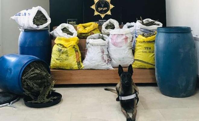 Şanlıurfa'da yol kontrollerinde 84 kilogram esrar ele geçirildi