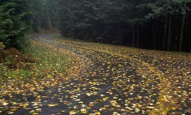 Yoldan Güzel Geçmek