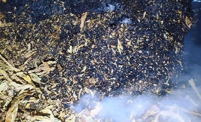 Tütün deposunda çıkan yangın maddi zarara neden oldu