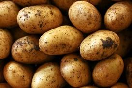 Patates çağrısı