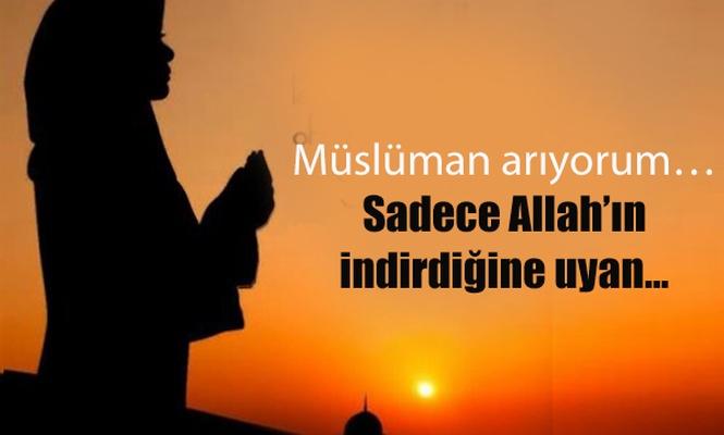 Müslüman arıyorum