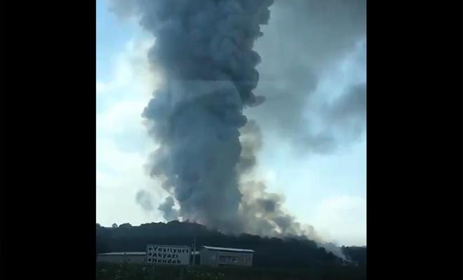 Sakarya'daki havai fişek fabrikasında patlama: 41 yaralı