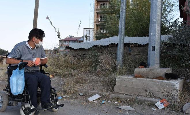 Bedensel engelli genç, akülü aracıyla her gün sokak hayvanlarının karnını doyuruyor