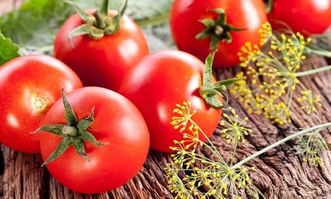 Rusya`ya satılan domateste yine sorun var