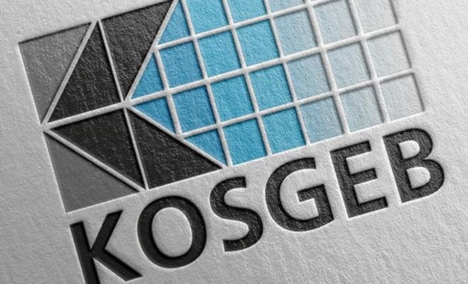 KOSGEB`den TL kararı!