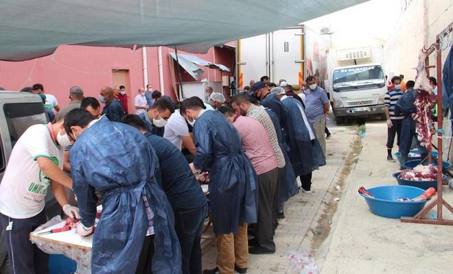 Van Umut Kervanı yüzlerce aileye kurban eti dağıtacak