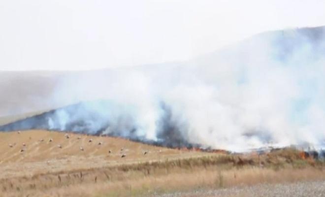 Kırıkkale`de Anız Yangını