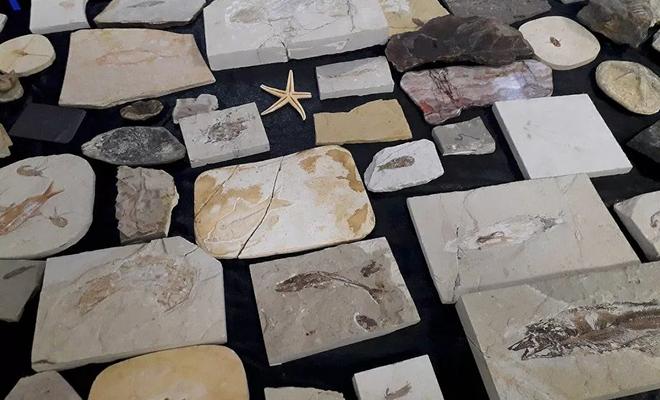 Adnan Oktar'ın evlerinden 150 milyon yıllık  fosil çıktı