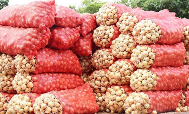 İhtiyaç sahibi ailelere ücretsiz patates ve soğan dağıtılacak
