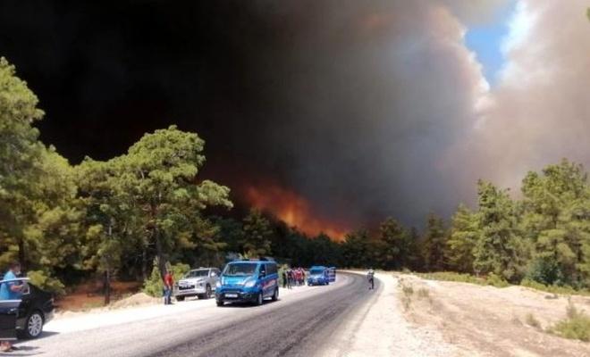 Antalya'da orman yangını!