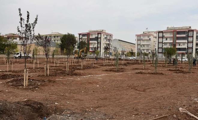 Diyarbakır'da bir buçuk yılda 50 bin metrekare yeşil alan çalışması yapıldı