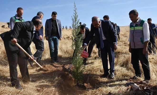 Hilvan Belediyesi  'Geleceğe Nefes' için Fidan Dikti