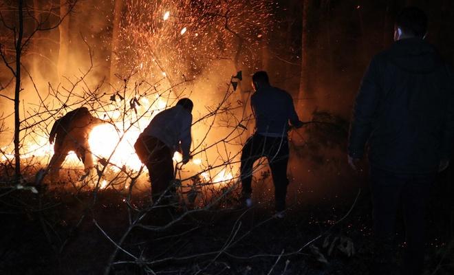 Sakarya'da madde bağımlıları İl Ormanını yaktı