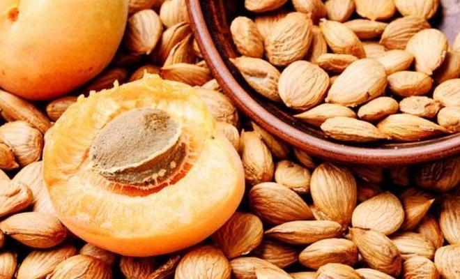 Kalp ve şeker hastaları dikkat, Kayısı çekirdeğinin TATLISI şifa, ACISI zehir