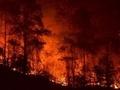 Yangınlarda 8. gün