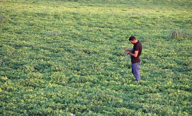 Çiftçi girdi maliyetinin pahalılığı, elektrik kesintisi ve kuraklıktan yakınıyor