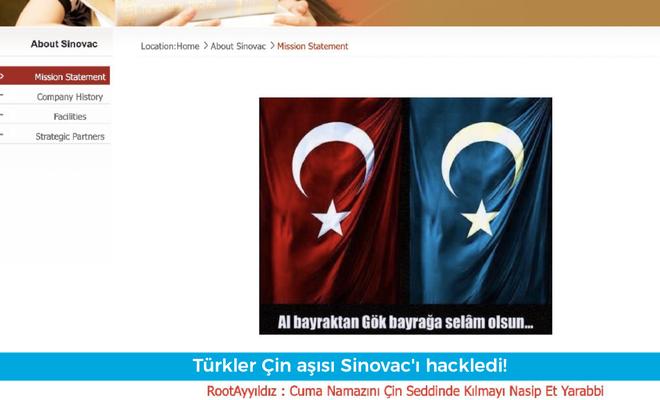 Sinovac sitesi hacklendi