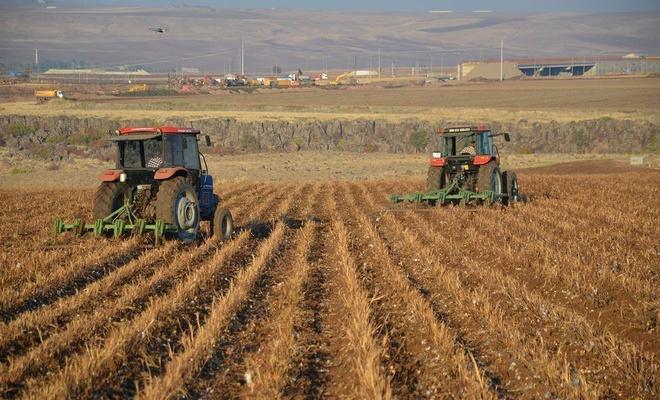 Tarım ürünleri üretici fiyat endeksi bir önceki aya oranla azaldı