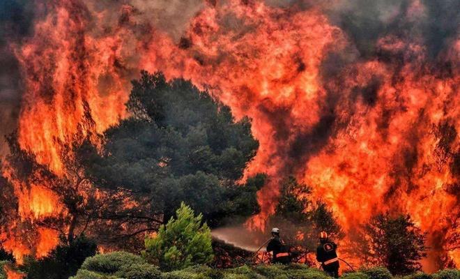 ABD'de yüksek sıcaklık ve yıldırımların tetiklediği orman yangınları hızını kesmedi