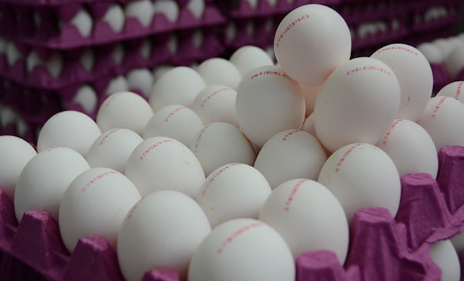 Irak'a yumurta satışı durunca iç piyasada fiyatlar düştü