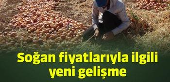 Soğan fiyatlarıyla ilgili yeni gelişme