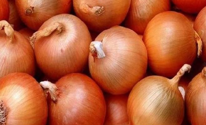 Soğan fiyatının 1-1,5 lira olması bekleniyor
