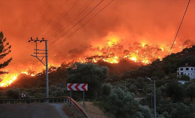Türkiye orman  yangınlarıyla mücadele ediyor! İşte son durum!